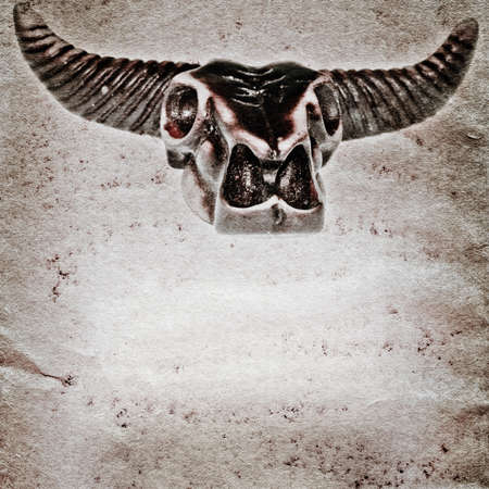 longhorn cattle: demon bull skull old grunge paper texture background