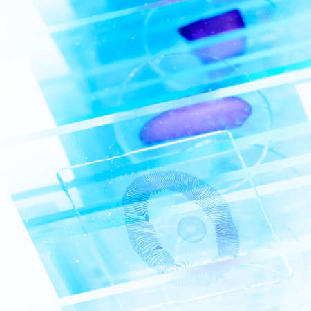 science medical glass microscope slide with sample Stock Photo - 17406089