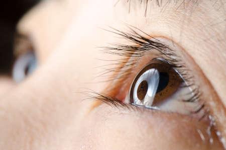 Eye macro Standard-Bild - 17408456