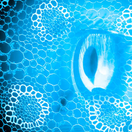 magnified: biology science background with eye
