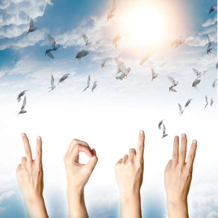 hand with new year 2013 abstract with doves flying on blue sky and cloud background photo