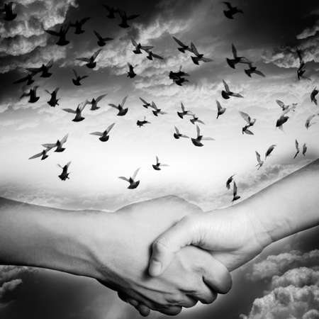 hand shake with dove flying on sky, business concept background. photo