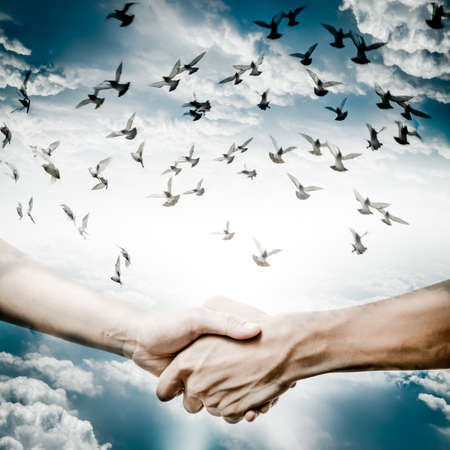 woman freedom: hand shake with dove flying on sky, business concept background.