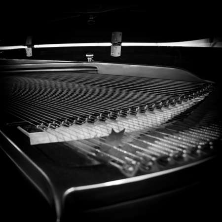 grand piano: Piano strings and hammer detail