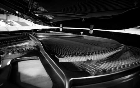 grand piano: Piano strings and hammer detail
