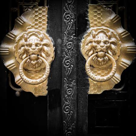 tocar la puerta: Sello Royal puerta Brozne león Foto de archivo