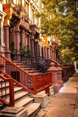 Brownstones of Harlem New York