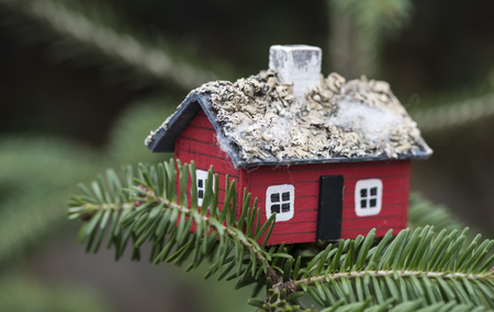 House miniature on fir tree. Small red house on tree branch.