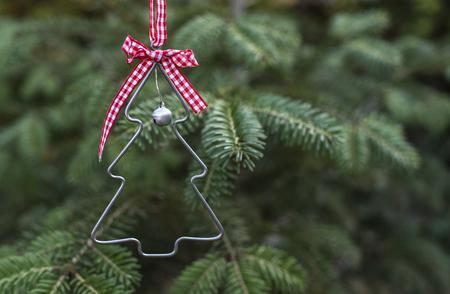 christmas tree shape on real pine tree christmas tree miniature shape on branch stock - Mini Real Christmas Tree