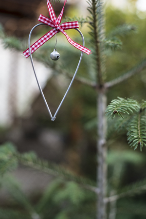 Christmas ornament heart shape on fir tree. Christmas fir tree and hart with ribbon. Stock Photo