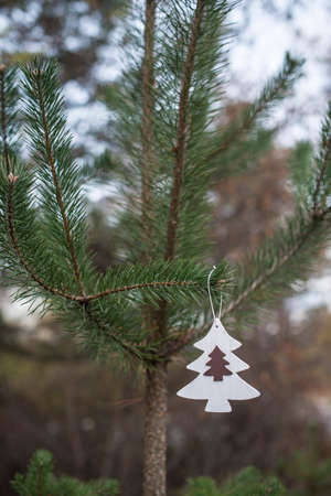 White christmas tree hooked on fir in the forest