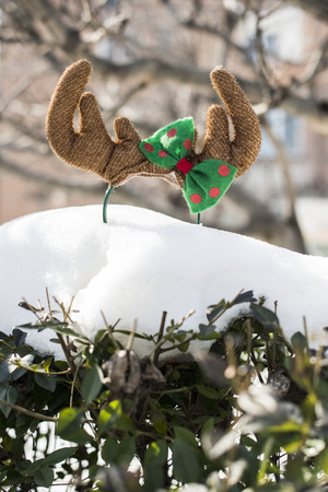 Christmas antlers on the snow