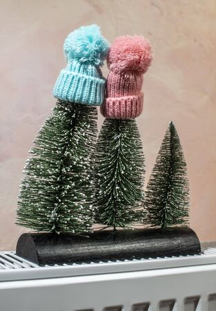 Fir trees with snow and winter hat. Cold winter seasonal concept. Christmas time.
