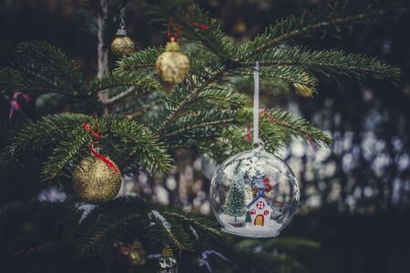 Transparent cristalball with christmas tree and house inside. Snow in christmas ball. Stockfoto