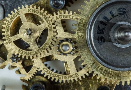 Gears of mechanism with texts on them - experience, knowledge, skills, education