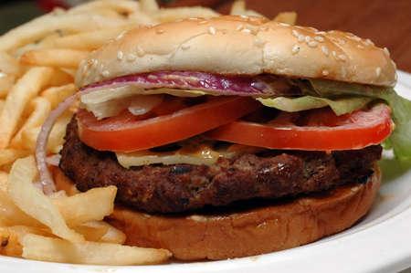 Angus burger with fries Zdjęcie Seryjne