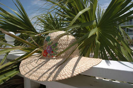 sun hat: Sun hat on deck with palm tree in background.
