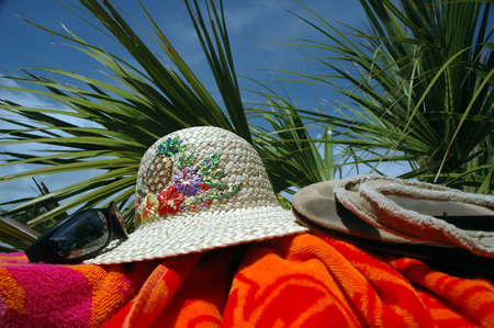 Sun hat, sunglasses, beach towel, and flip flops with palm tree in background. photo