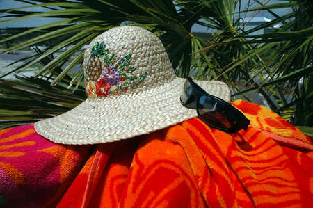 sun hat: Sun hat, sunglasses, and beach towel with palm tree in background.