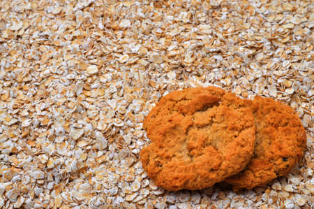 oatmeal: Two oatmeal cookies on bed of oatmeal with copy space.