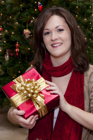 Smiling young female holding Christmas present with tree in background. Stock Photo - 10346120