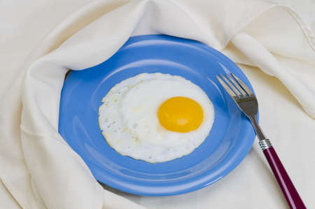 Fried egg on plate with fork and napkin.