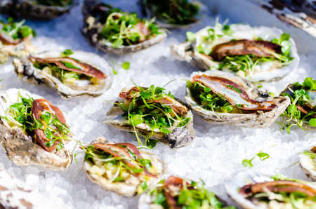 Gourmet oyster dish on ice  写真素材