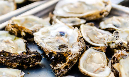 Raw oysters closeup with shallow depth of field