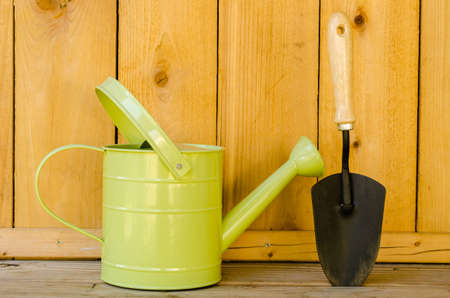 Watering can and trowel on wood background