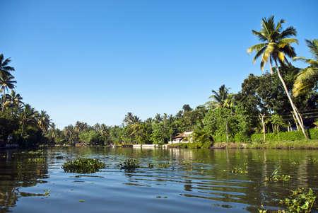 backwaters: Allapey backwaters