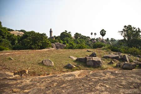 mamallapuram: mamallapuram
