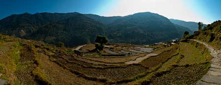 Annapurna area rice fields Stock Photo