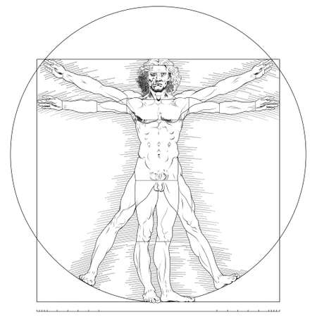 Illustration of Vitruvian man, Leonardo da Vinci drawing, Study of the anatomy of the human body, Canon of human proportions, only lines, all on white background