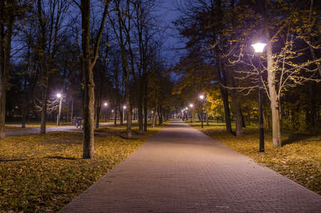 Footpath in the night forest in the park with glowing lanterns. Landscape of night park