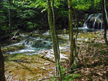 Cascading river with beautiful rapids in the green spring forest. Crimean mountains at spring.