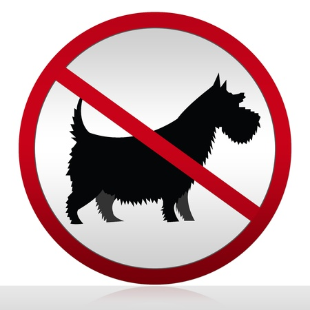 No Pets Allowed Sign Isolated on White Background  photo