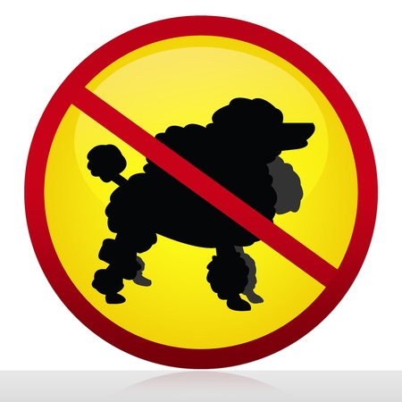 No Dog Allowed Sign Isolated on White Background Stock Photo - 14669823