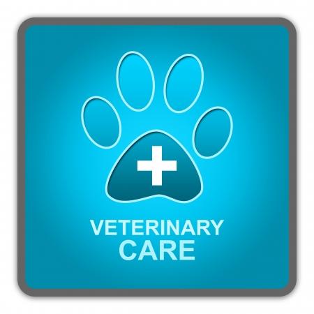 veterinario: El estilo brillante azul mascotas Iniciar sesi�n Cuidado Veterinario Aislado sobre fondo blanco
