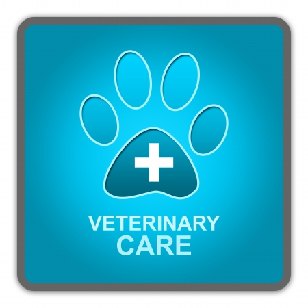 The Blue Glossy Style Pet Veterinary Care Sign Isolated on White Background  Stock Photo