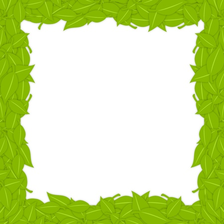 Green Leaf Border With White Space for Text Message  photo