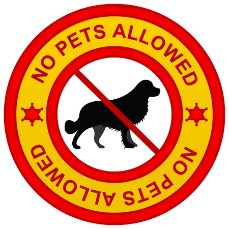 No Pets Allowed Yellow Sign Isolated on White Background  photo