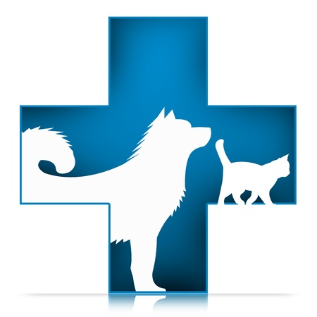 veterinaria: 3D Sign Pet Care Veterinary con el perro y el gato en Cruz Azul Aislado sobre fondo blanco
