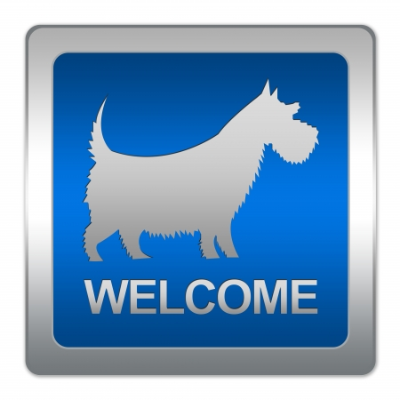 Dogs Welcome Sign on Square Blue Metallic Plate With Silver Border Isolated on White Background  photo