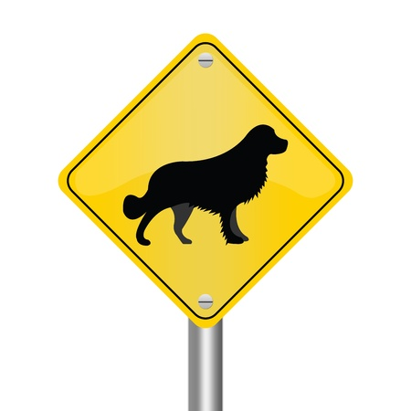 Yellow Rhombus Road Sign For Pet Allowed Zone Isolated on White Background  photo