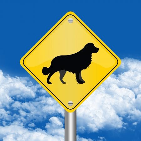 Yellow Rhombus Road Sign For Pet Allowed Zone Against The Blue Sky Background  photo