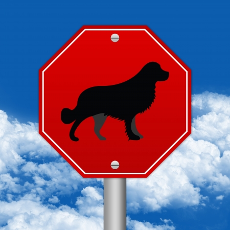 Hexagon Red Traffic Sign For Pet Allowed Zone Against The Blue Sky Background  photo