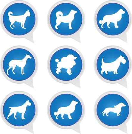 Set Of White Dog on Blue Icons Isolated on White Background  photo