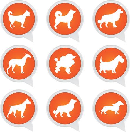 golden retriever puppy: Set Of White Dog on Orange Icons Isolated on White Background