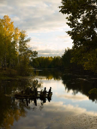 Lake in wood in the autumn evening. photo