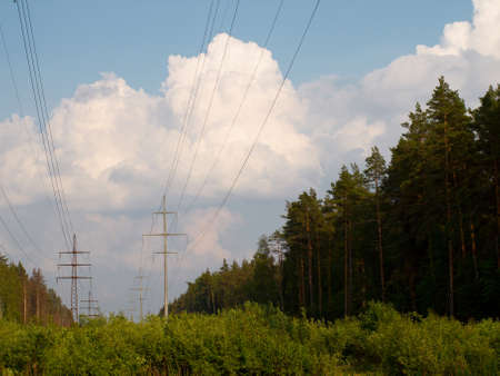 glade: The High-voltage transmission line passing through a wood glade